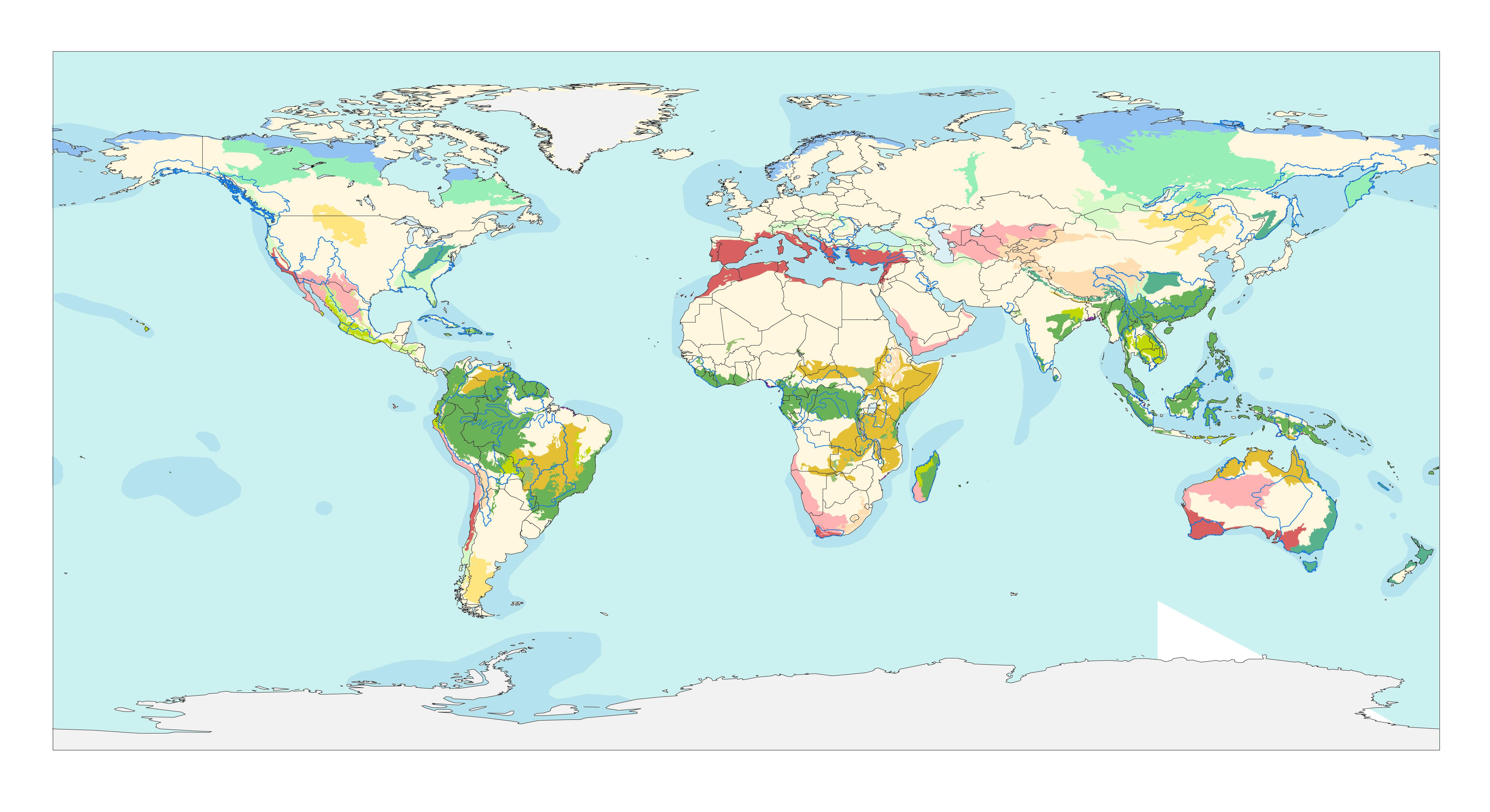 Ecorregiones del mundo