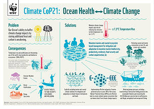 INFOGRAPHIC: Climate change and ocean health
