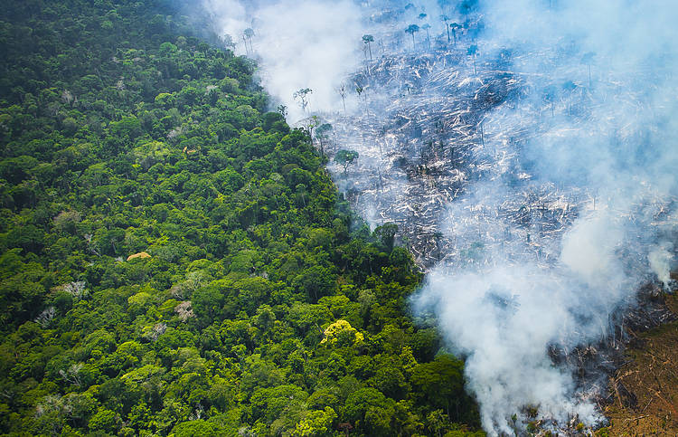 June records the highest number of fires in the last 13 years in Brazilian Amazon