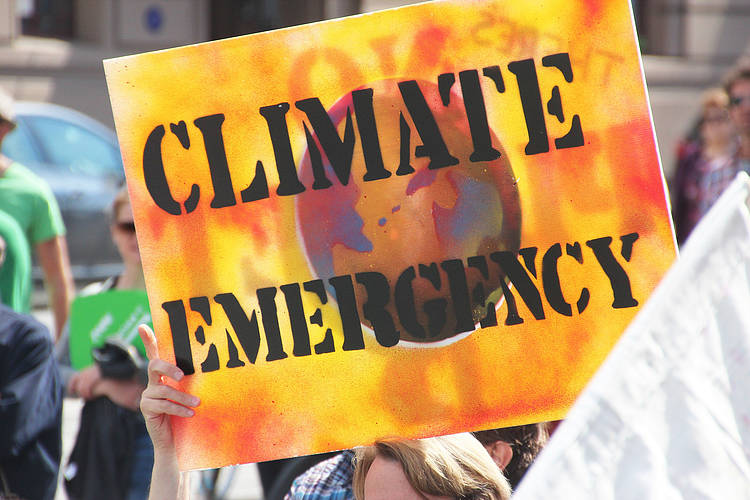 Youth activists demand to be heard on climate action