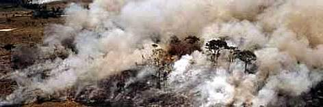 Aerial shot of the Amazon showing forest fire, Acre State, Brazil. rel=