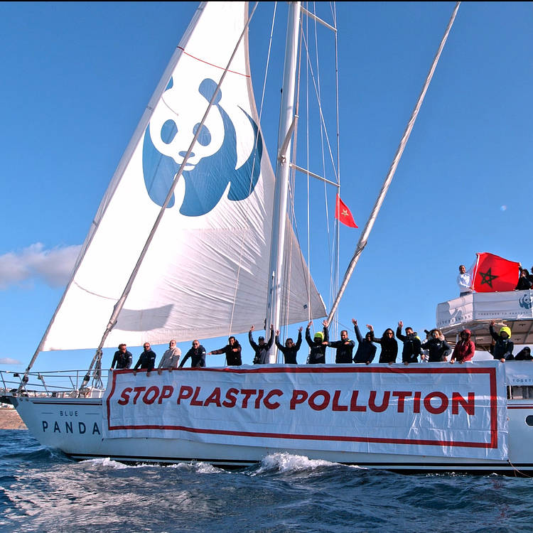 The Blue Panda's fight against plastic reaches the frontier between Europe and Africa