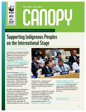 CANOPY (issue 1, 2017): biannual news from WWF Forest and Climate