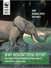 WWF Central Africa Biomonitoring Report  © WWF Cameroon