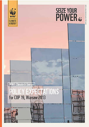 Policy Expectation for COP19