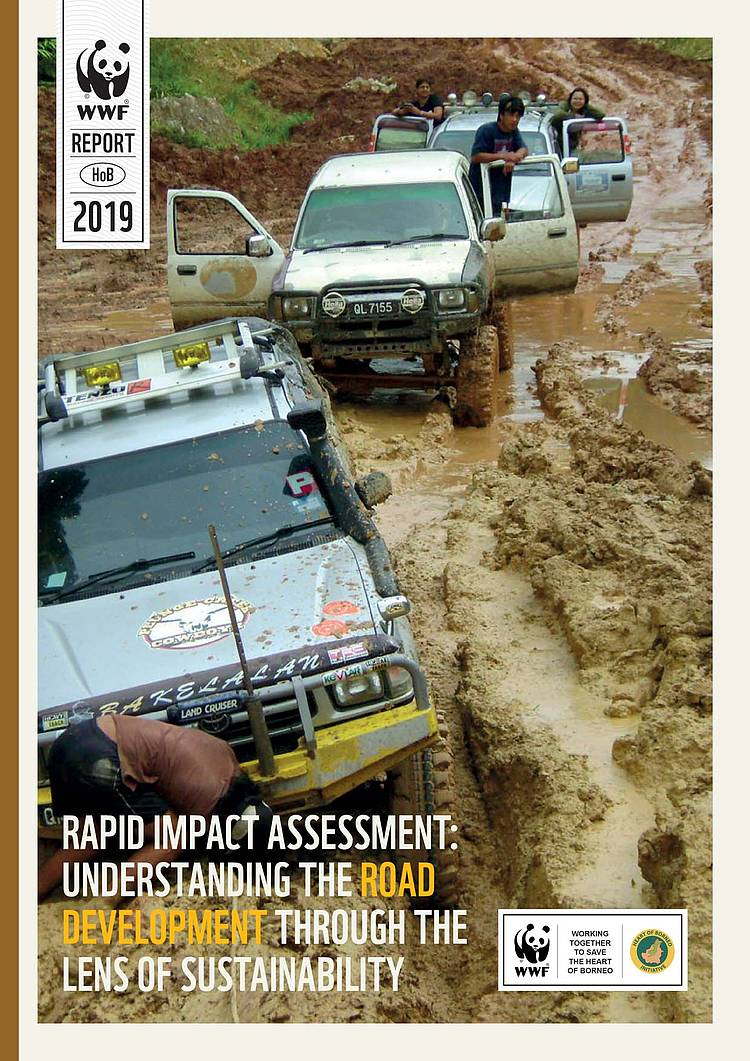 Rapid Impact Assessment: Understanding the Road Development through the Lens of Sustainability