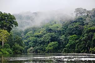 © Sinziana Demian/WWF Central Africa