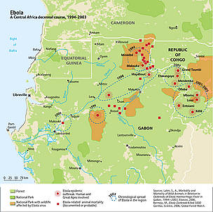The spread of ebola across Central Africa, 1994-2003. Ebola epidemic outbreaks across the Congo ...  © UNEP/GRID-Arendal. Sources: Lahm, S., A., Morbidity and Mortality of Wild Animals in Relation to Outbreaks of Ebola Haemorrhagic Fever in Gabon, 1994—2003, Elsevier, 2006; Bermejo, M., Ebola Outbreak Killed 5000 Gorillas, Science, 2006; Global Forest Watch.