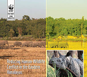 Reducing Human-Wildlife Conflict in the Eastern Himalayas