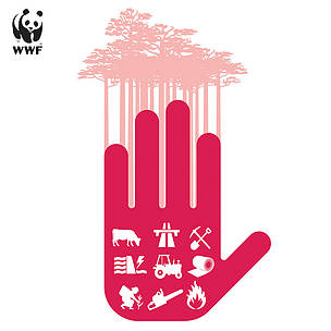 Deforestation and illegal timber trade top WWF's agenda at XIV World Forestry Congress