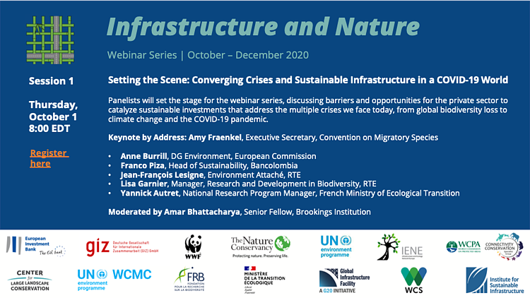 Converging Crises and Sustainable Infrastructure in a COVID-19 World: Infrastructure and Nature Pavilion Webinar Series