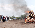 A pile of ivory burnt during an official ceremony in Kinshasa on 30 September