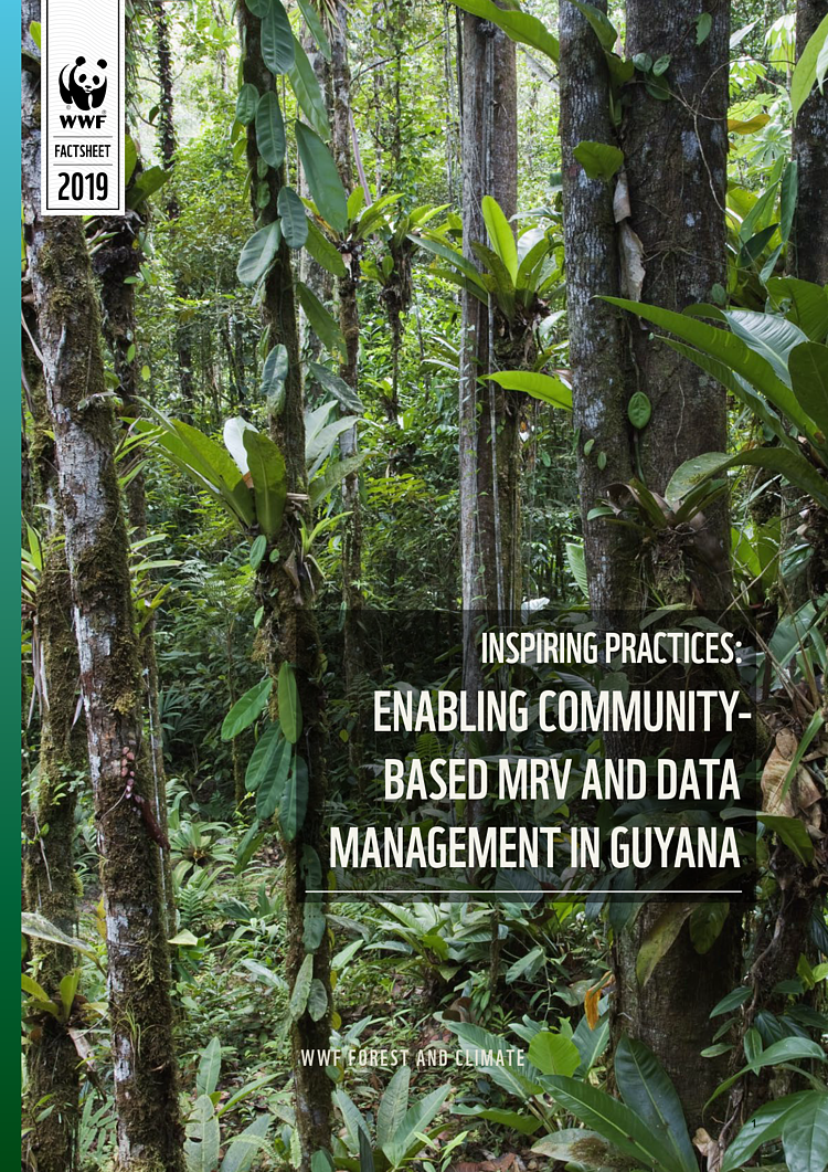Inspiring Practices: Enabling Community-Based MRV and Data Management in Guyana