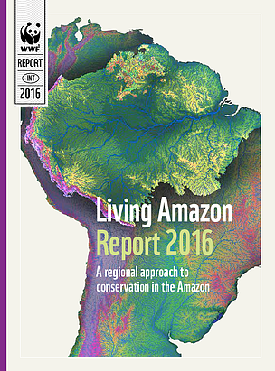 Region-wide cooperation critical to future of the Amazon