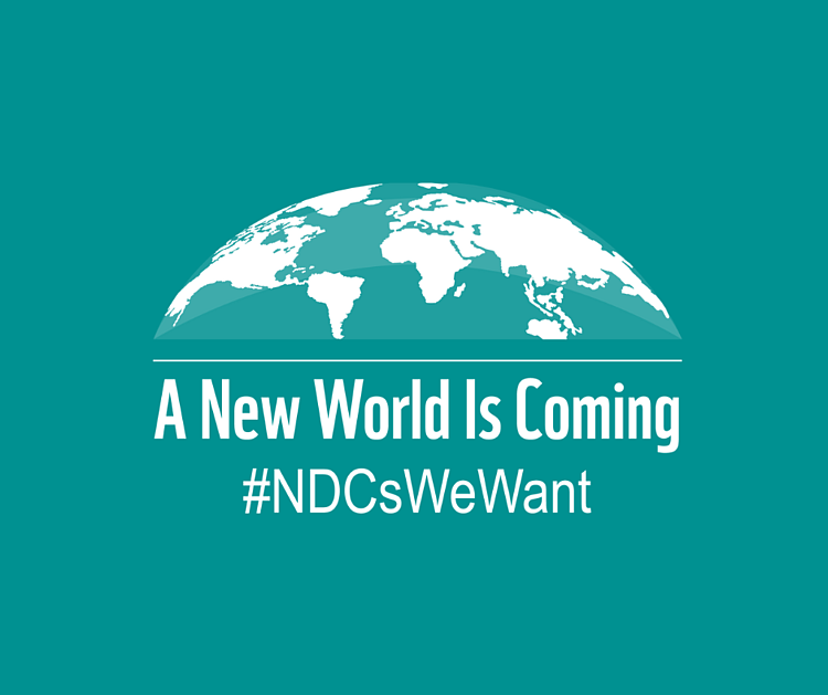 WWF releases checklist to assess #NDCsWeWant
