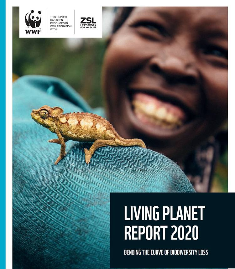 WWF's Living Planet Report reveals two-thirds decline in wildlife populations on average since 1970