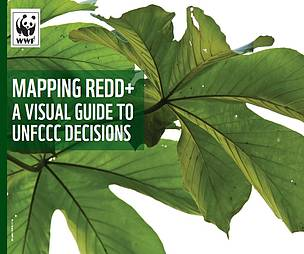 Mapping REDD+: A visual guide to UNFCCC decisions