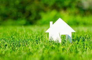 Projekt Zelená pre biznis