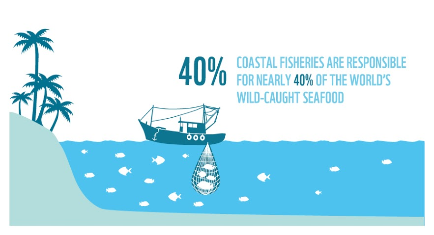 40% of coastal fisheries is responsible for 40% of world's wild-caught seafood