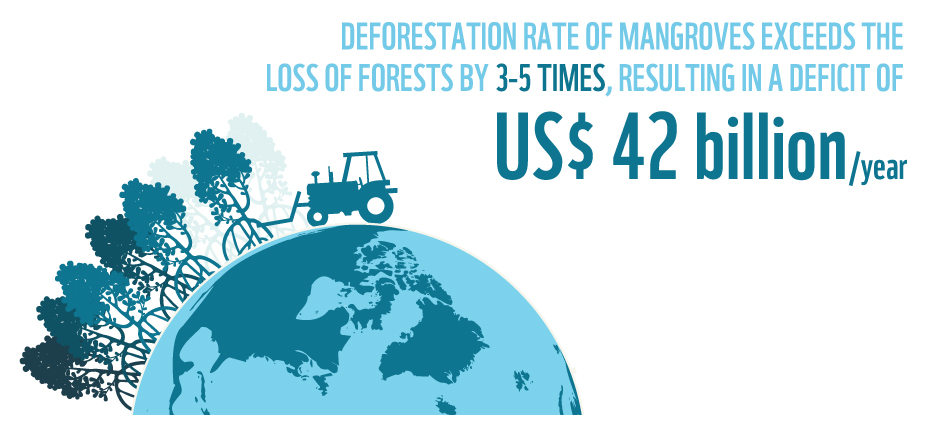 The deforestation rate of mangroves exceeds loss of forests by 3-5 times