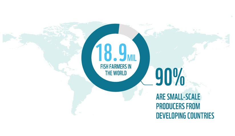 90% of fish farmers are small-scale producers from developing countries