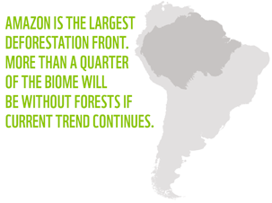 The Amazon is the biggest deforestation front in the world.