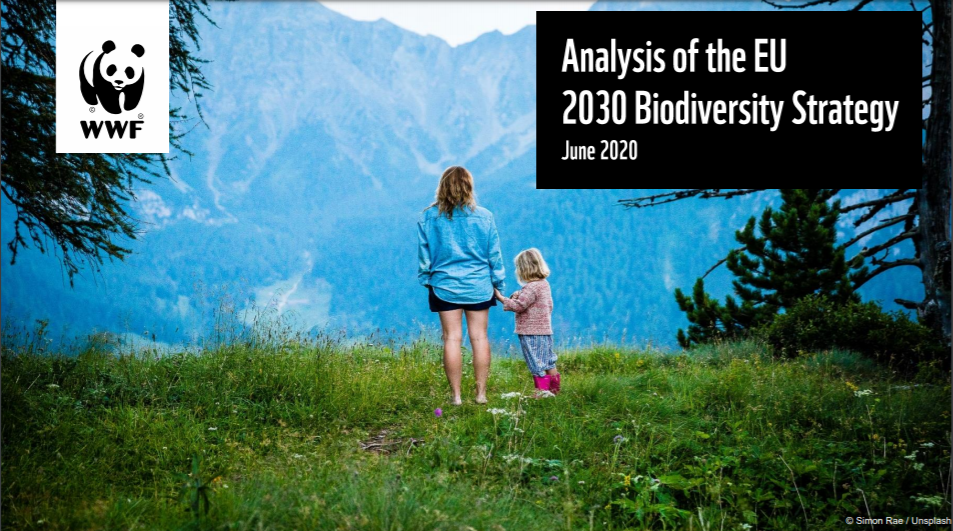 The EU biodiversity strategy to - Publications Office of the EU