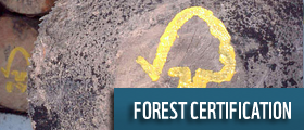 forest certification wwf