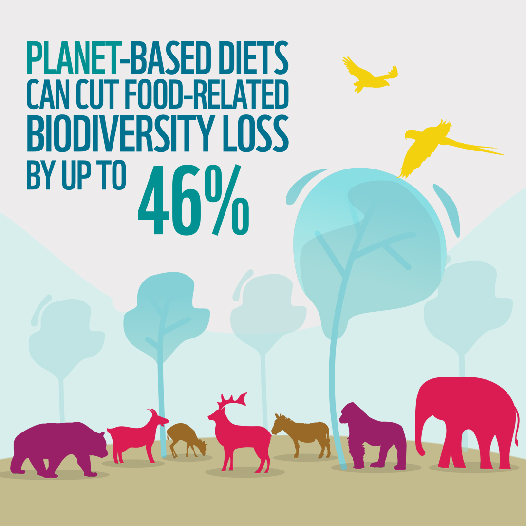 WWF Planet-Based Diets approach
