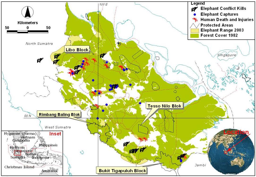 Picture of: Mapping Sumatra S Shrinking Elephant Habitat Wwf