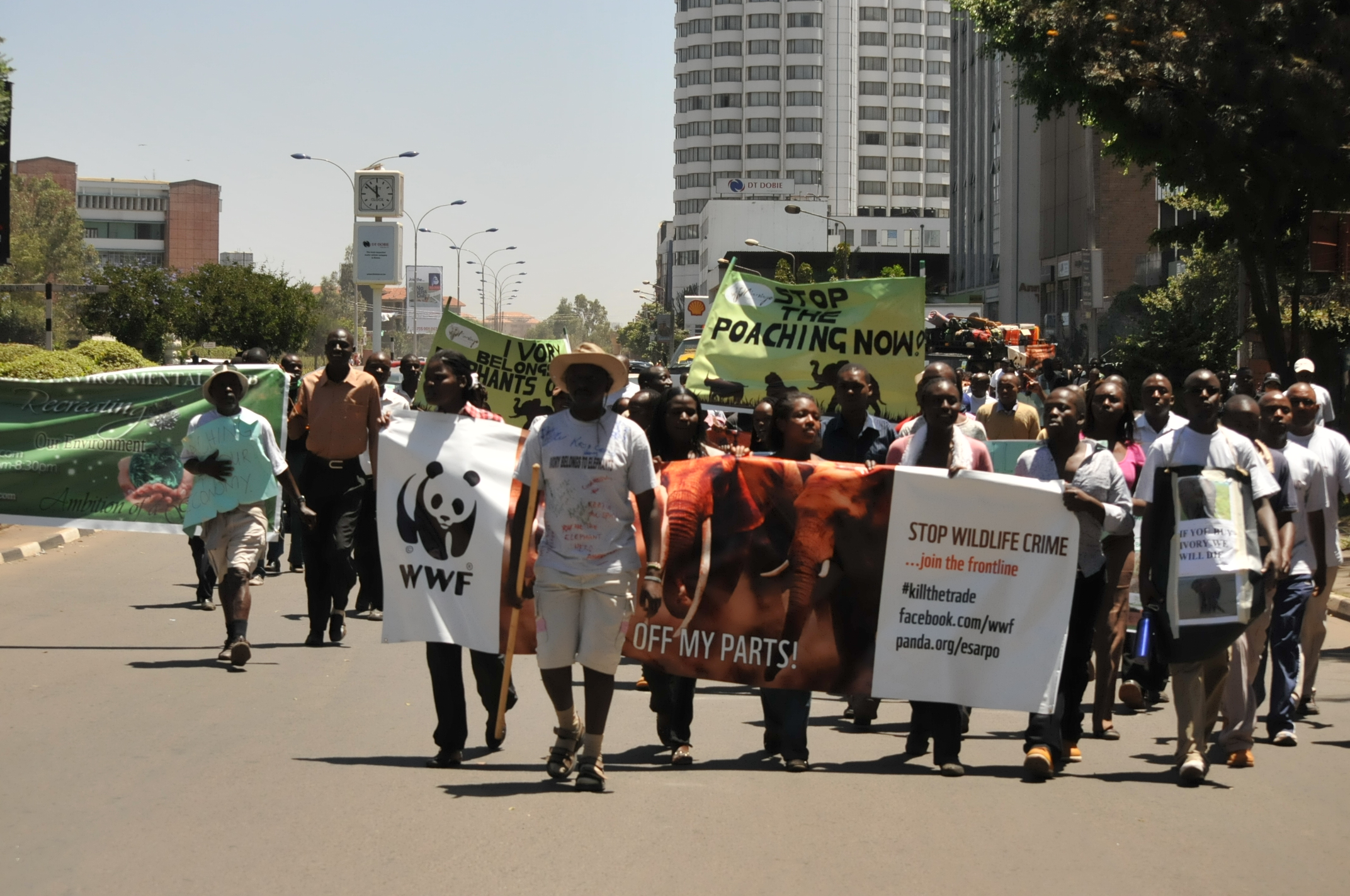 WWF joins Elephant Neighbours Centre and other partners to make a public call against illegal wildlife trade.