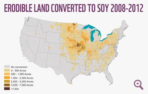 The North American Prairie WWF - Original prairie areas in the us map