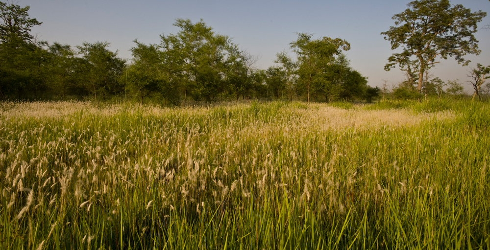 The Terai Arc Landscape Project (TAL) - Protected Areas | WWF