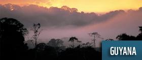 ©: Staffan Widstrand / WWF