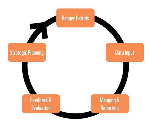 SMART Feedback Loop