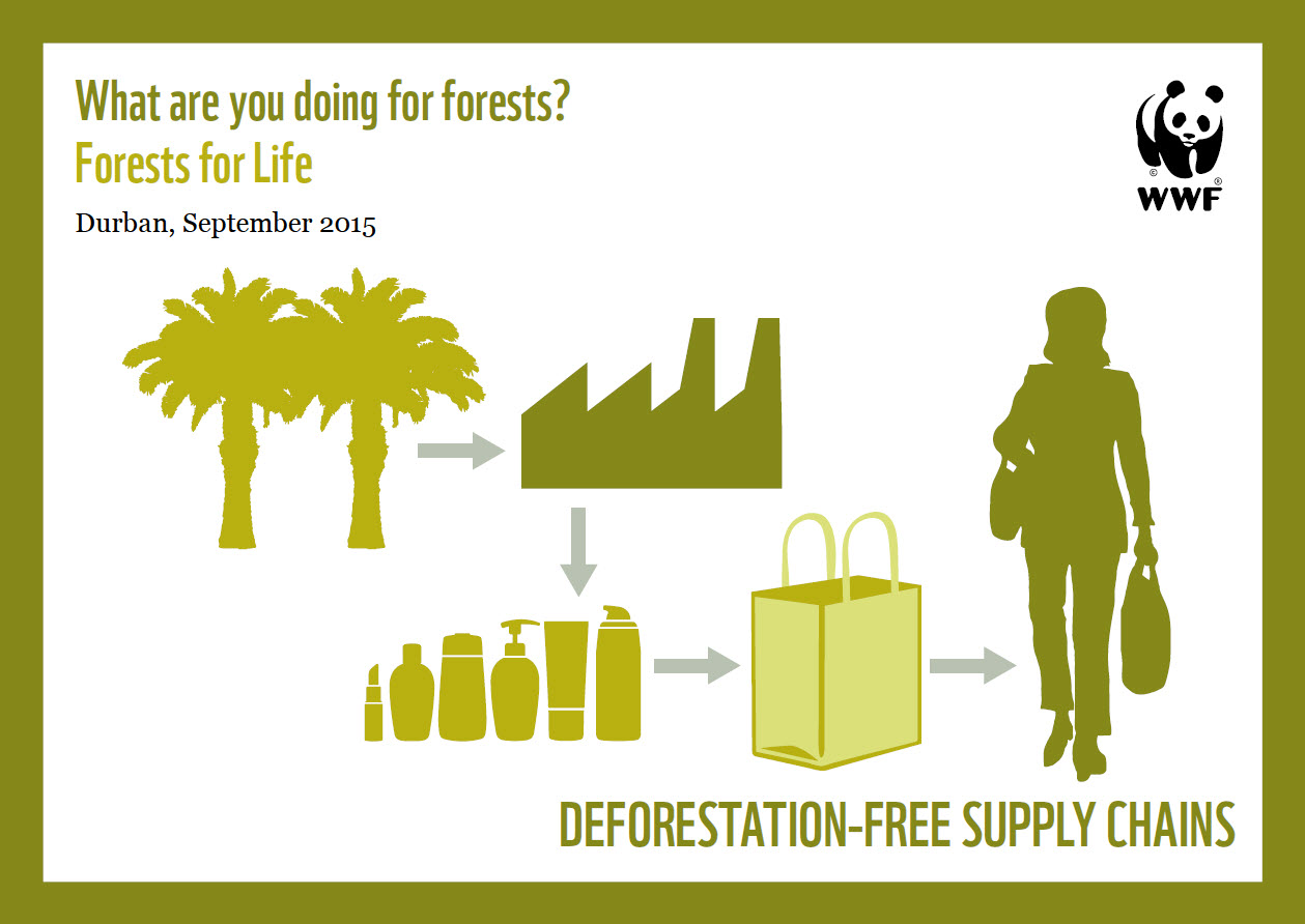 preventive measures of deforestation How to prevent deforestation you don't have to live in the middle of a rainforest to do your part in preventing deforestation below are a few suggestions to.