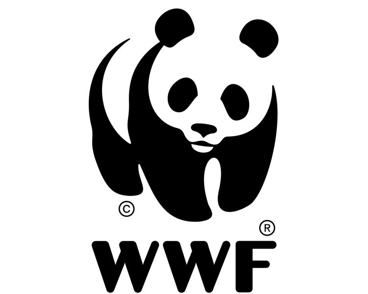 WWF position statement, IWC 62