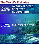 52% of the world's fisheries are fully exploited