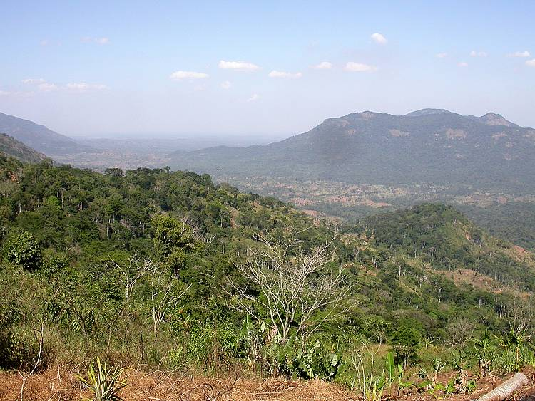 Experiences in Forest Landscape Restoration: Lessons learnt from the East Usambara Landscape in Tanzania
