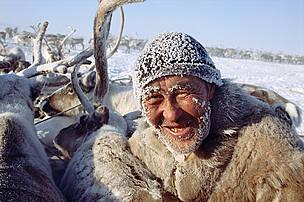 WWF - The Arctic