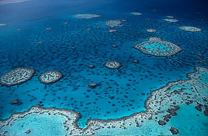 WWF praises people power in spurring Australia marine parks decision