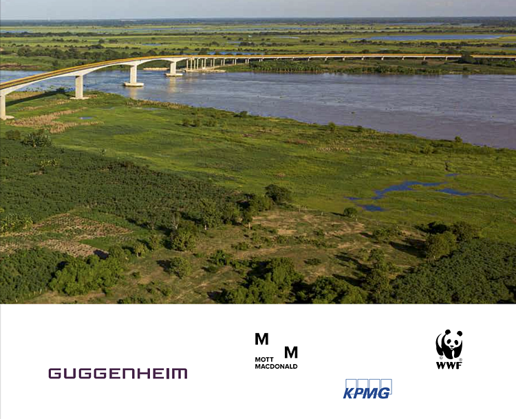 WWF, Guggenheim Investments, KPMG, and Mott MacDonald Assess Merits of Sustainable Infrastructure Standards