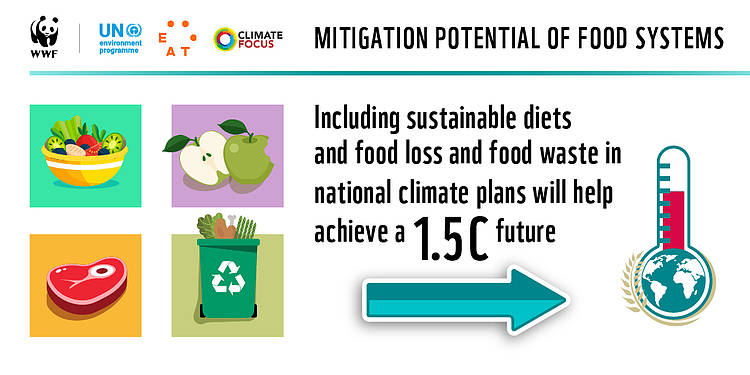 Improved Climate Action on Food Systems Can Deliver 20% of Global Emissions Reductions Needed by 2050