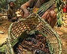 A local fishermen in Tridom Gabon
