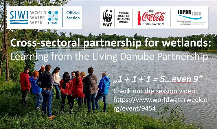 Cross-sectoral Partnership for Danube Wetlands