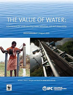 Undervaluing water reduces shareholder value and harms ecosystems