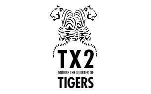 TAI Logo