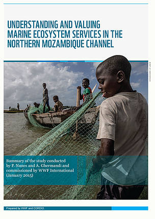 STUDY: Understanding and valuing marine ecosystem services in the Northern Mozambique Channel