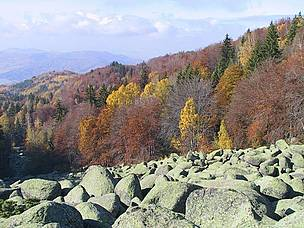 Autumn landscape from Vitosha Nature Park, Bulgaria  © WWF DCP BG Archive