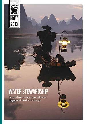 Water Stewardship: Perspectives on business risk and responses to water challenges